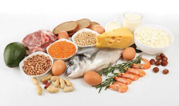 Chất đạm protein trong cơ thể